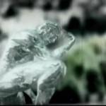 """Новый клип LACRIMOSA """"Feuer"""""""